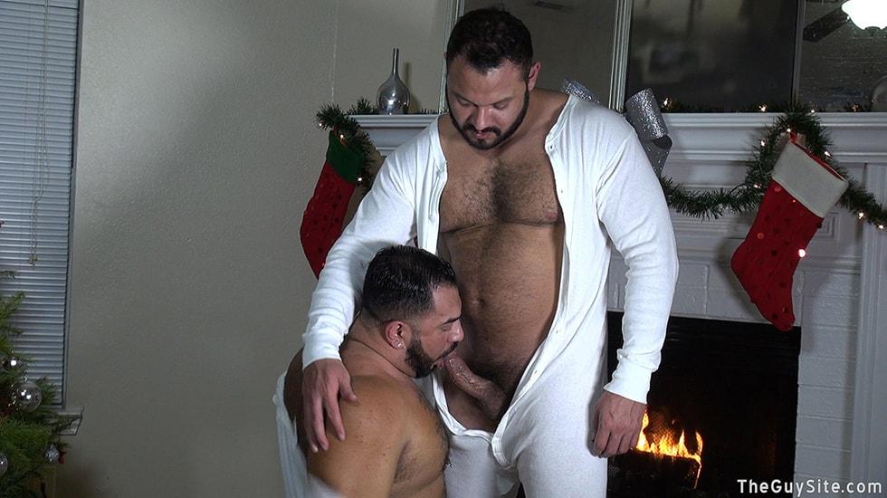 Winter Bears